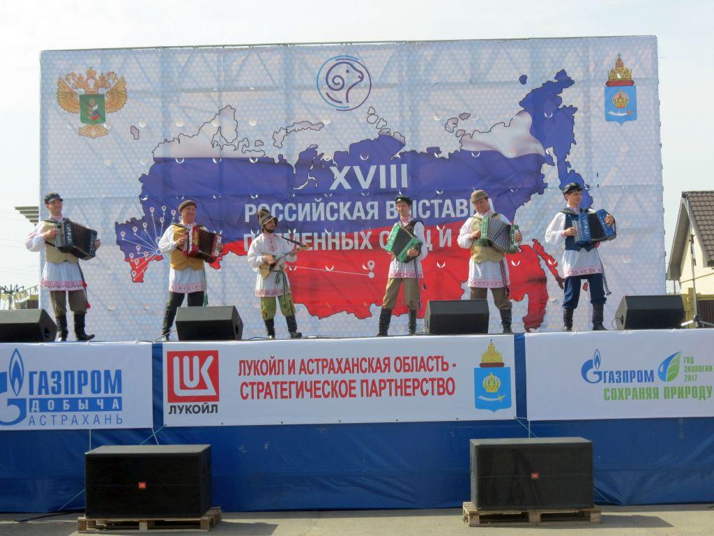 Астраханский центр народной культуры принял участие в  18-ой Российской выставке племенных овец и коз