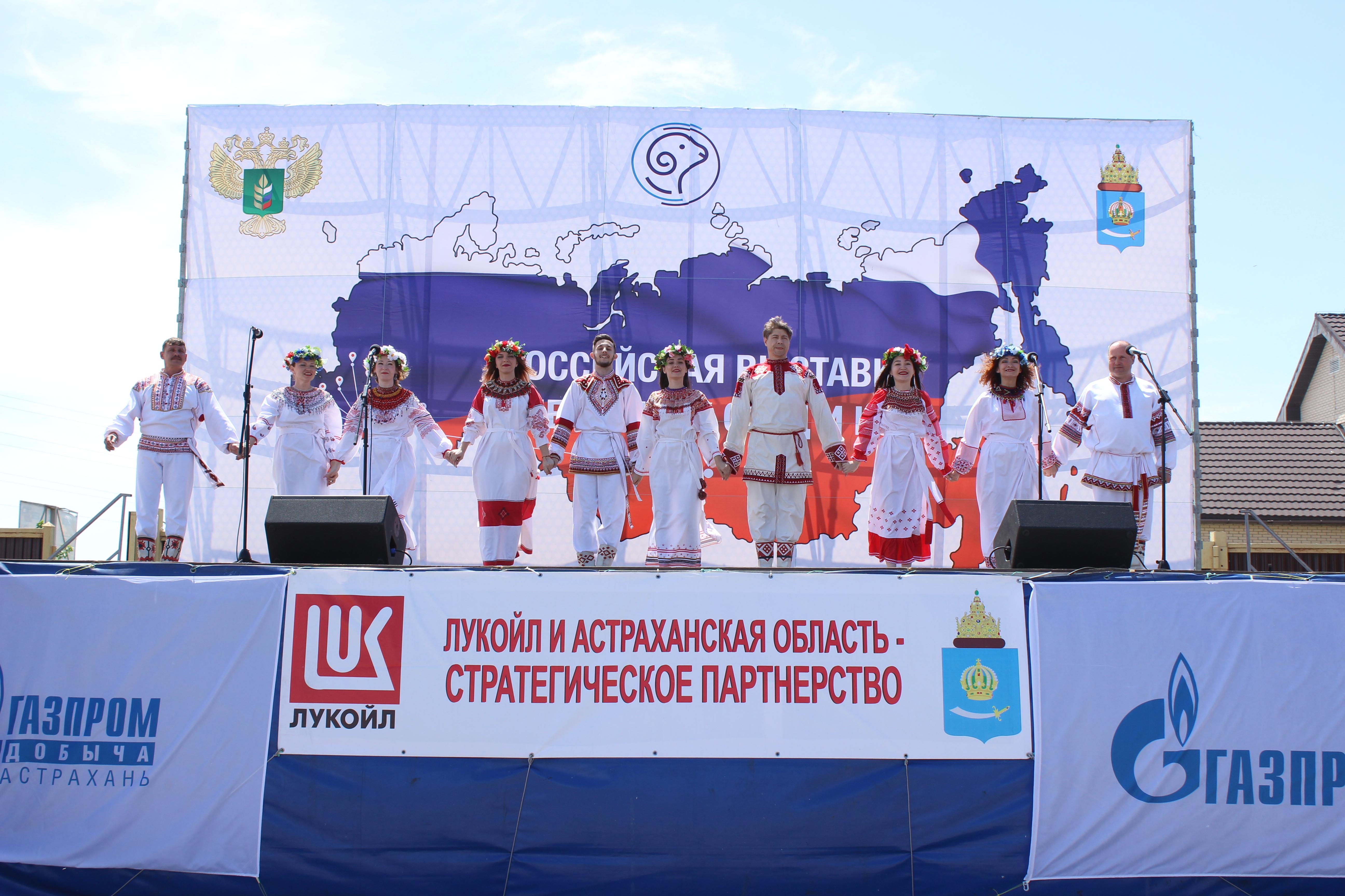 Астраханский центр народной культуры принял участие в  19-ой Российской выставке племенных овец и коз