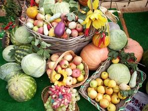 Конкурс садоводов и огородников «Мой любимый огород»